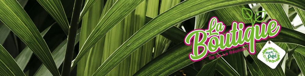 La boutique Plant'Pei