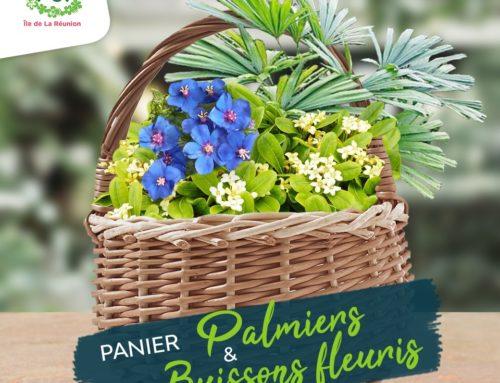 Fiches conseil – Panier Palmier & Buissons