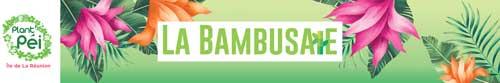 La bambusaie