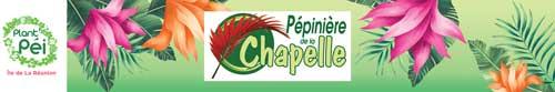 Pépinière de la chapelle